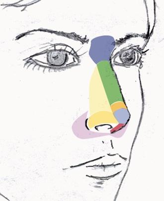 Lipofilling en la nariz
