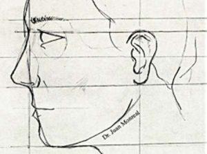 Bases estetica nasal y facial - Dr. Juan Monreal