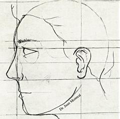 La nariz y la cara. La divina proporción.