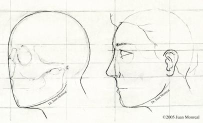 Consulta Inicial Rinoplastia
