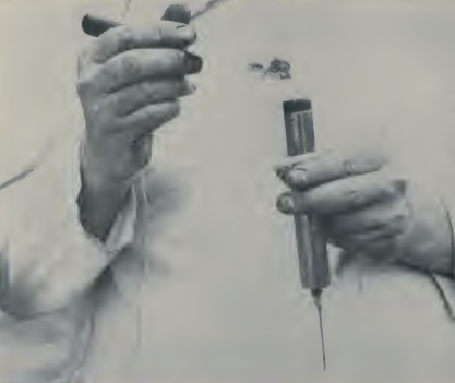 inyección de grasa 1923