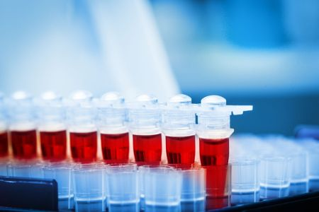 Medicina Regenerativa Células Madre Dr. Juan Monreal