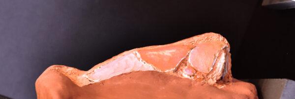 escultura-nariz-dr-monreal