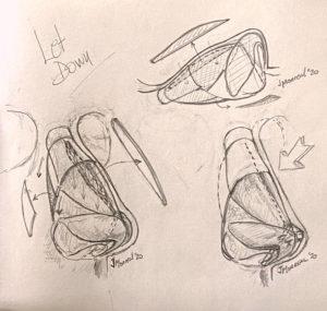 dibujo-rino-preservación